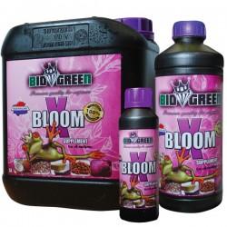 X Bloom