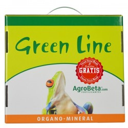 kit green line small