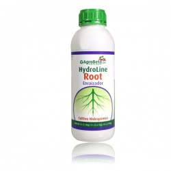 Hydro root
